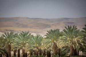 Holy Land - Jordan River